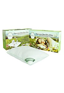 Regenerative Anion Fibre Pillow